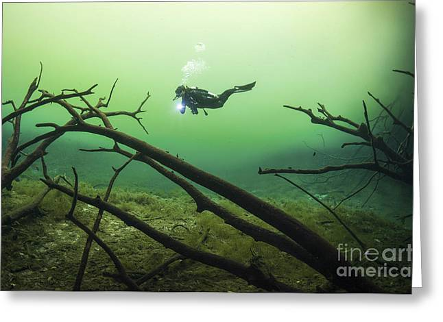 Cenote Greeting Cards - A Diver In The Car Wash Cenote System Greeting Card by Karen Doody