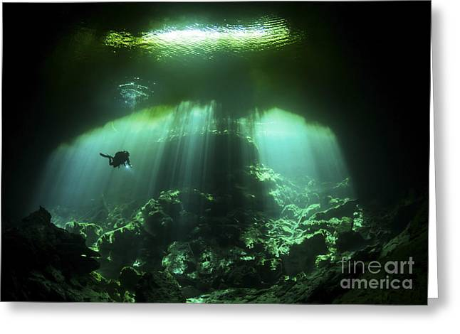 Water In Cave Greeting Cards - A Diver In The Garden Of Eden Cenote Greeting Card by Karen Doody