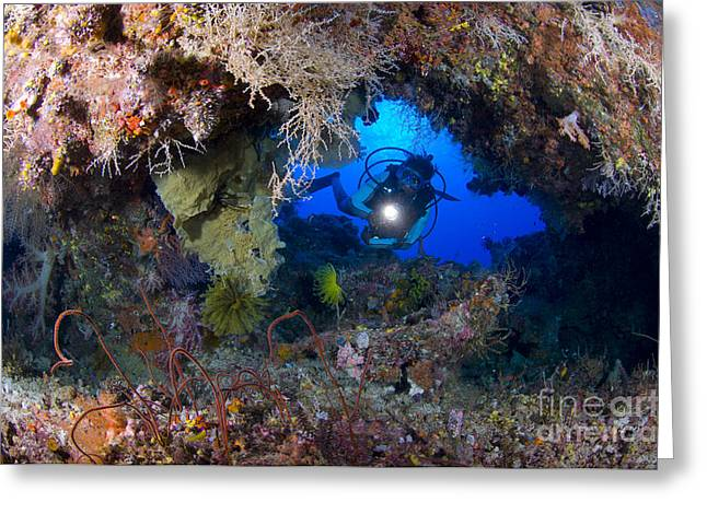 Cavern Greeting Cards - A Diver Peers Through A Coral Encrusted Greeting Card by Steve Jones