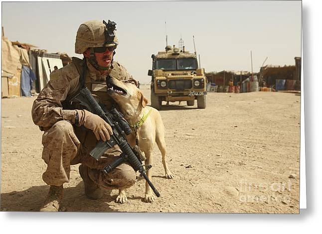Helmand Province Greeting Cards - A Dog Handler Posts Security With An Greeting Card by Stocktrek Images