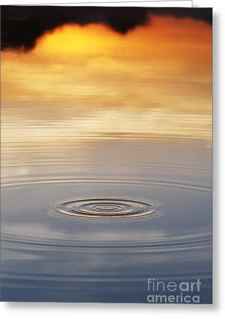 Reflecting Water Greeting Cards - A Drop in the Ocean  Greeting Card by Tim Gainey