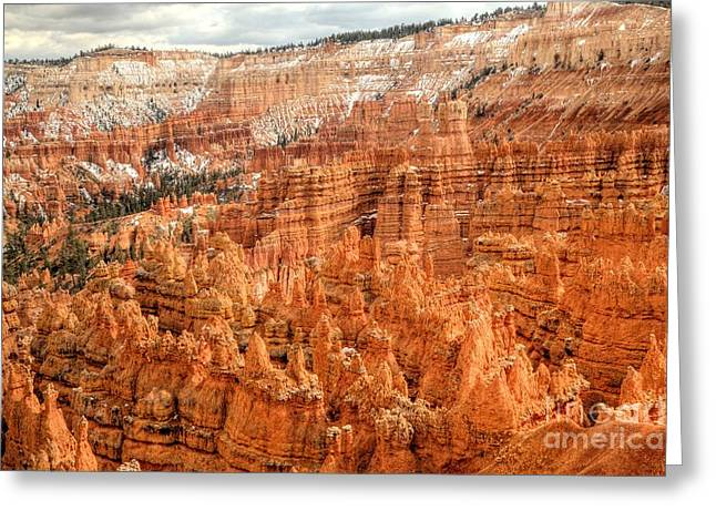 Southern Utah Greeting Cards - A Dusting of Snow Greeting Card by Roxie Crouch