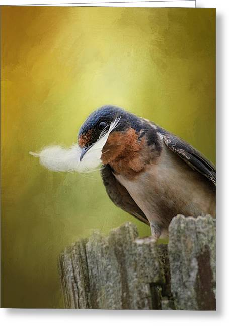 Swallow Photographs Greeting Cards - A Feather For Her Nest Greeting Card by Jai Johnson