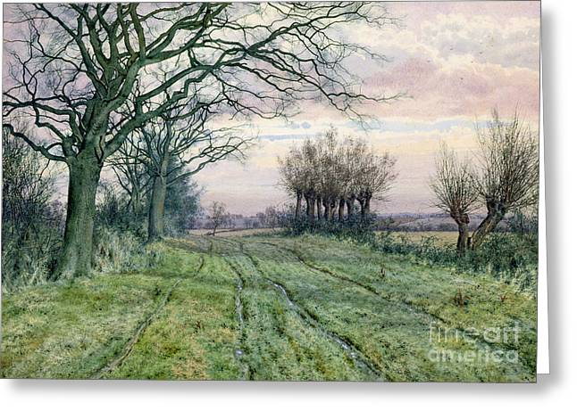 Crisp Greeting Cards - A Fenland Lane with Pollarded Willows Greeting Card by William Fraser Garden