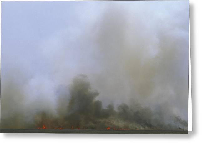 A Fire Burns In The Marsh On Ocracoke Greeting Card by Stephen Alvarez