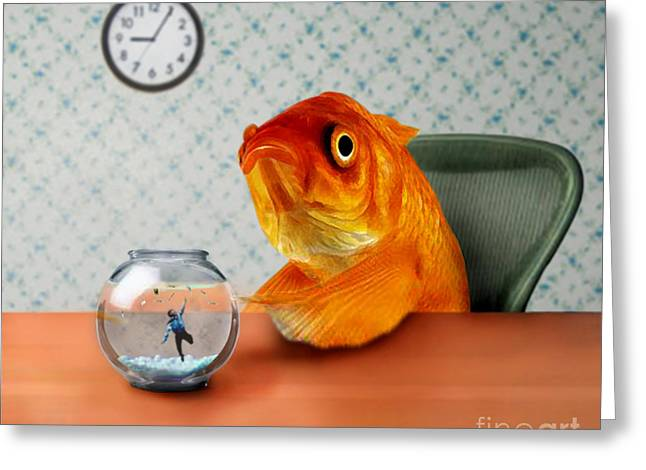 Desk Greeting Cards - A Fish Out Of Water Greeting Card by Carrie Jackson