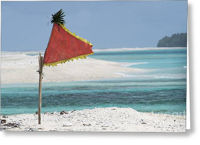 A Flag Flaps In The Wind For A Drop Zone Greeting Card by Celestial Images