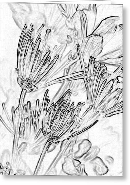 Artwork Flowers Greeting Cards - A Flower Sketch Greeting Card by Julie Lueders
