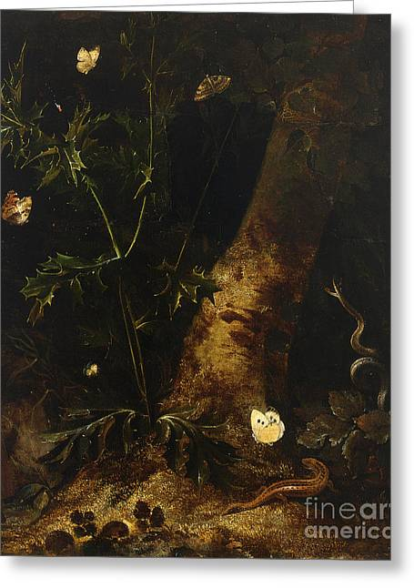 Forest Floor Paintings Greeting Cards - A Forest Floor  Still Life With A Salamander Greeting Card by Celestial Images