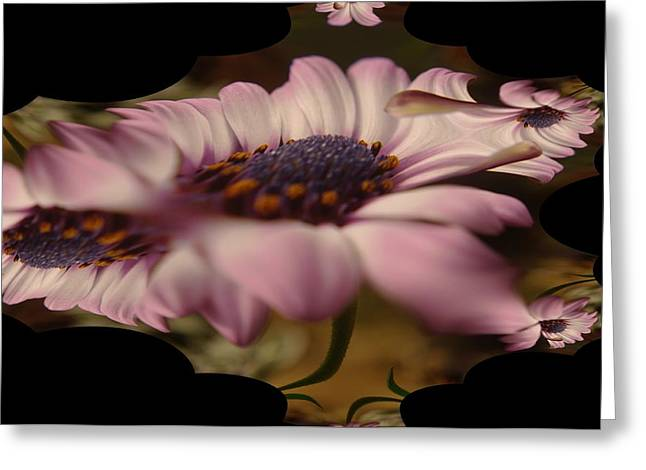 Abstract Digital Photographs Greeting Cards - A Fractual Flower Greeting Card by Jeff  Swan