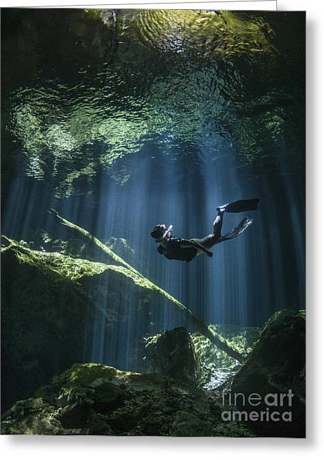 Cenote Greeting Cards - A Freediver In Taj Mahal Cenote Greeting Card by Karen Doody