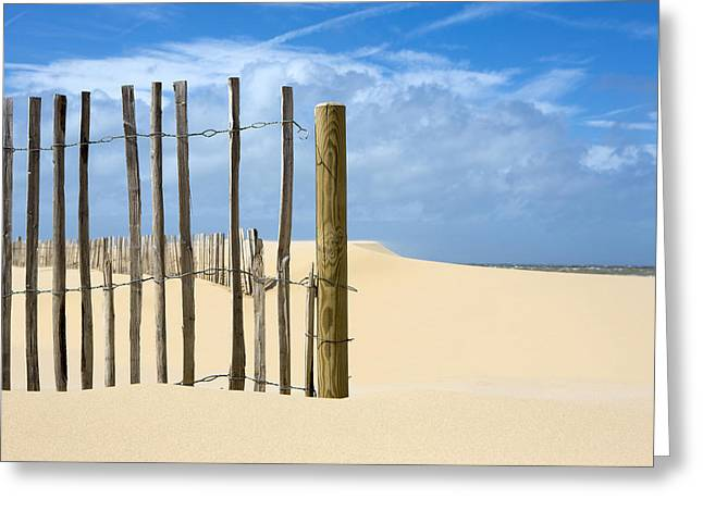 Dave Greeting Cards - A French Fence Greeting Card by David Hare