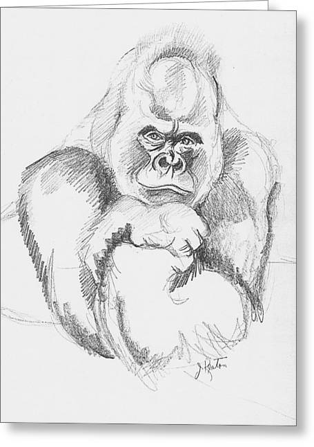 Gorilla Drawings Greeting Cards - A Friendly Gorilla Greeting Card by John Keaton
