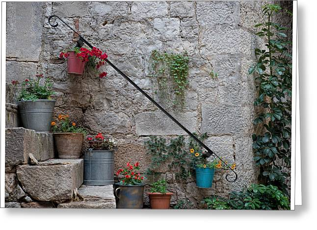 Stepping Stones Greeting Cards - A Garden on my Steps Greeting Card by Eric  Bjerke Sr