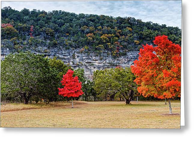 A Great Day For A Picnic Lost Maples - Fall Foliage - Texas Hill Country  Greeting Card by Silvio Ligutti