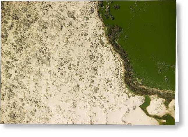 Brine Greeting Cards - A Green Brine Lake In Coastal Namibia Greeting Card by Michael Fay