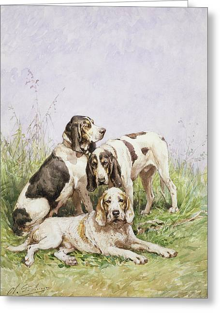 Oliver Greeting Cards - A Group of French Hounds Greeting Card by Charles Oliver de Penne