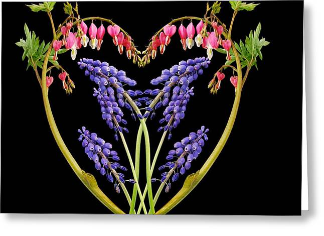 A Heart of Hearts Greeting Card by Michael Peychich