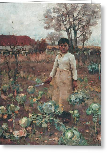 A Hind's Daughter Greeting Card by James Guthrie