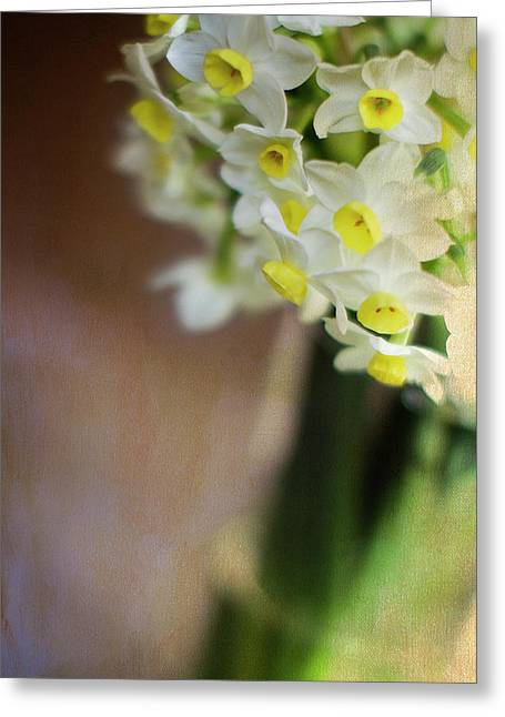 Narcissus Greeting Cards - A Hint of Spring Greeting Card by Rebecca Cozart