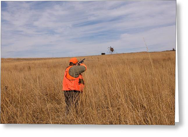 Model Released Photography Greeting Cards - A Hunter Shoots A Ring Necked Pheasant Greeting Card by Joel Sartore