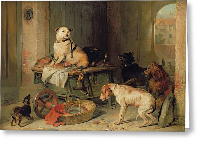 Hoarding Greeting Cards - A Jack in Office Greeting Card by Sir Edwin Landseer
