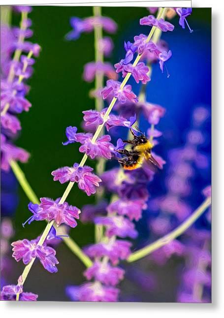A Lavender World 2 - Paint Greeting Card by Steve Harrington