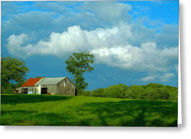 Red Roofed Barn Greeting Cards - a lazy rural day in northast Pa. Greeting Card by Earl Devendorf