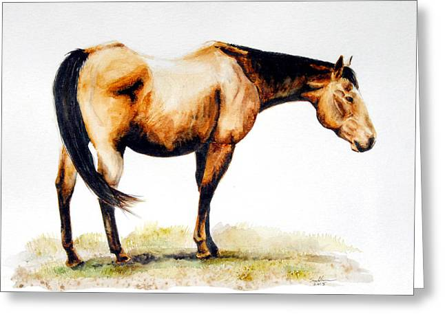 Quarter Horse Greeting Cards - A Lifetime of Experience Greeting Card by Suzanne Sudekum