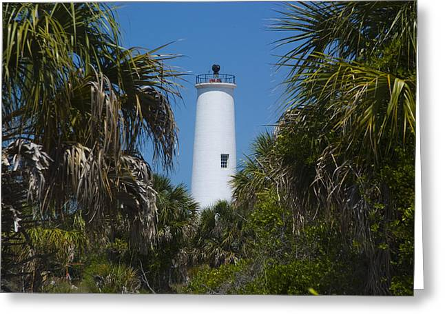 Florida State Parks Greeting Cards - A Lighthouse On The Edge Of Tampa Bay Greeting Card by Stacy Gold