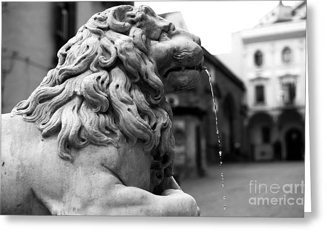 Old Street Greeting Cards - A Lion in Napoli Greeting Card by John Rizzuto