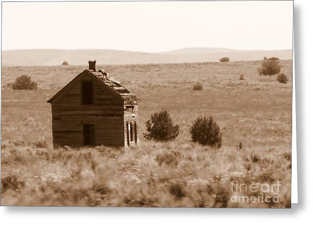 Old Shack Greeting Cards - A Little Isolated Greeting Card by Carol Groenen