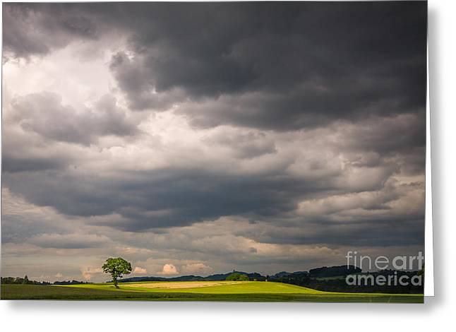 Swiss Photographs Greeting Cards - A lone tree under a stormy sky Greeting Card by Ning Mosberger-Tang