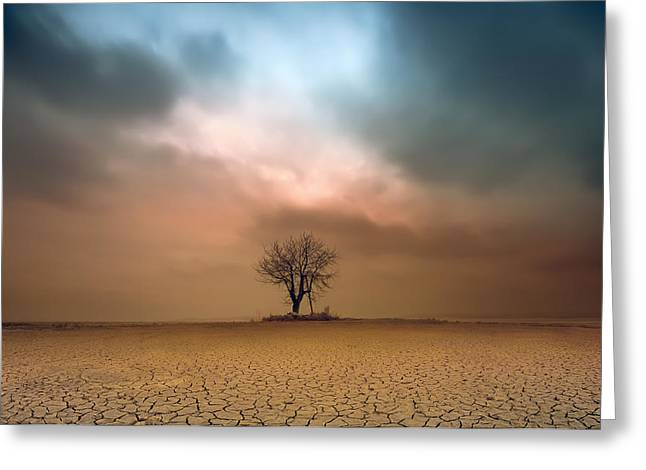 Hdr Landscape Greeting Cards - A Loner ... Greeting Card by Piotr Krol (bax)