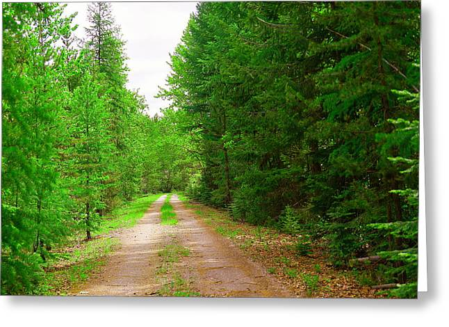 A Long Gravel Road Greeting Card by Jeff Swan