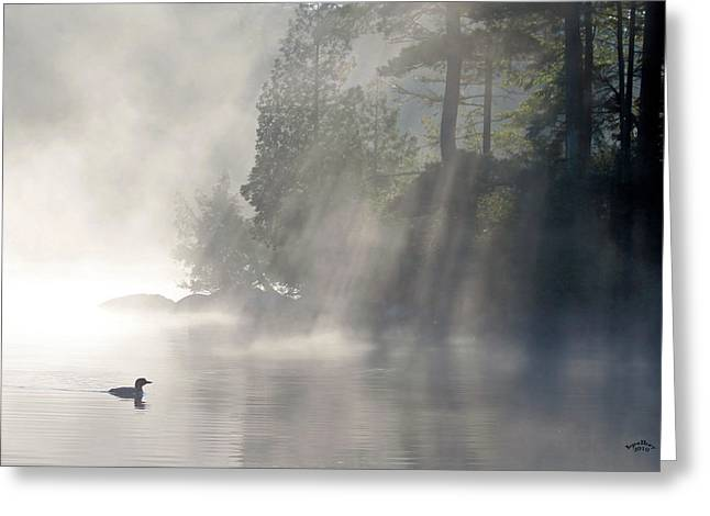 A Loon In The Mist Greeting Card by Brian Pelkey