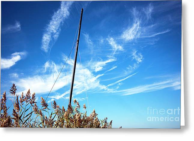 Sailboat Photos Greeting Cards - A Mast Appears 2014 Greeting Card by John Rizzuto