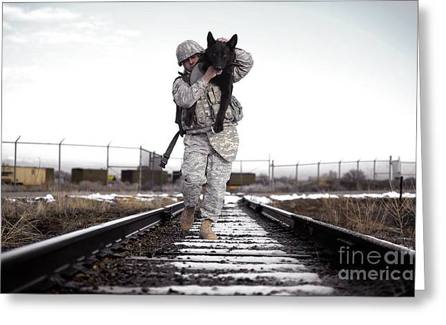 Dog Handler Greeting Cards - A Military Dog Handler Uses An Greeting Card by Stocktrek Images