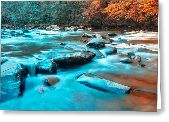 Tennessee River Greeting Cards - A Moment in the Great Smoky Mountains Greeting Card by Rich Leighton