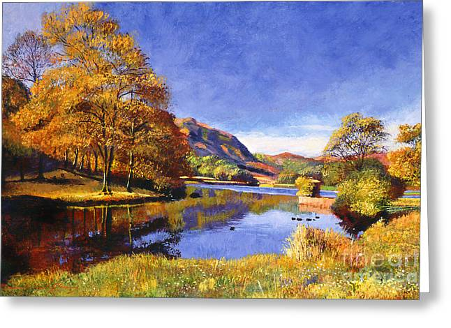 Duck Pond Greeting Cards - A Moment of Stillness Greeting Card by David Lloyd Glover
