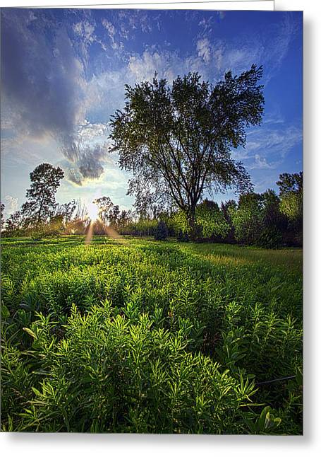 A Moment Or Two Greeting Card by Phil Koch