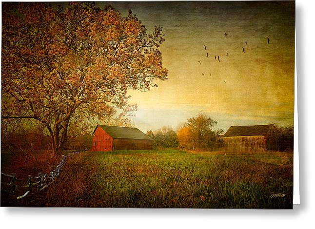 Barn Digital Greeting Cards - A New Dawn Greeting Card by Michael Petrizzo