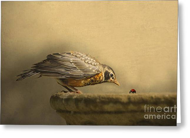 Juveniles Greeting Cards - A New Day Greeting Card by Jan Piller