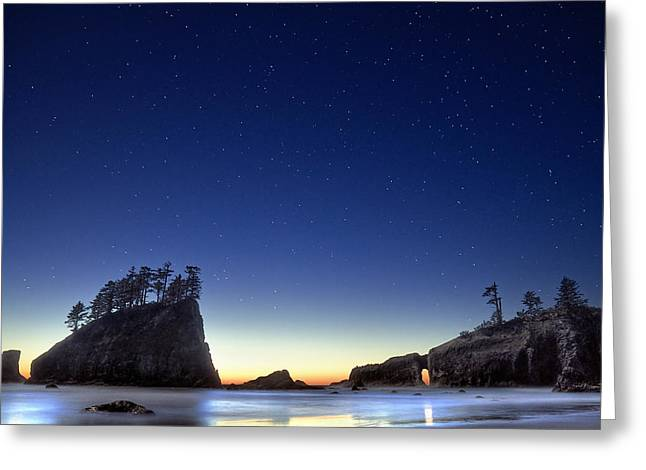A Night For Stargazing Greeting Card by William Lee