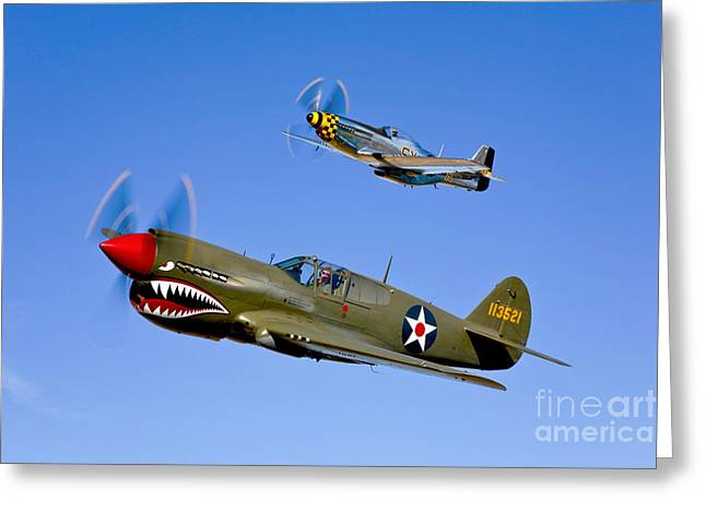 Propeller Greeting Cards - A P-40e Warhawk And A P-51d Mustang Greeting Card by Scott Germain