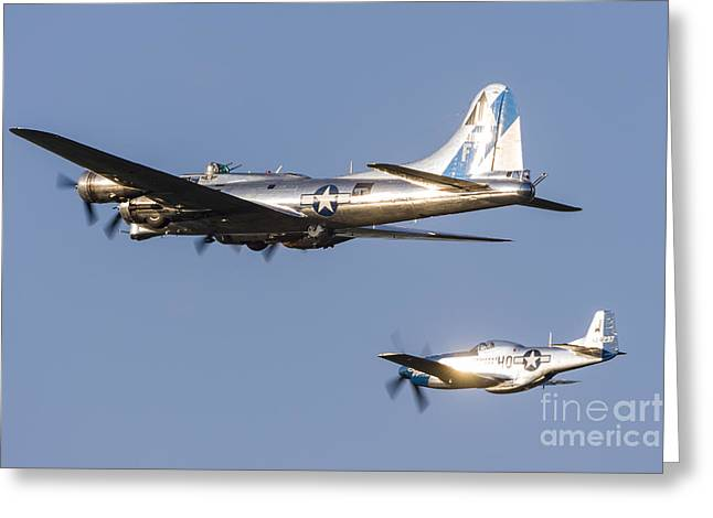 U.s. Army Air Corps Greeting Cards - A P-51 Mustang Flies Alongside A B-17 Greeting Card by Rob Edgcumbe