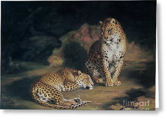 Sleep Paintings Greeting Cards - A Pair of Leopards Greeting Card by William Huggins