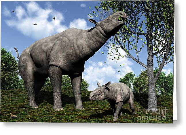 Feeding Digital Greeting Cards - A Paraceratherium Mother Grazes Greeting Card by Walter Myers