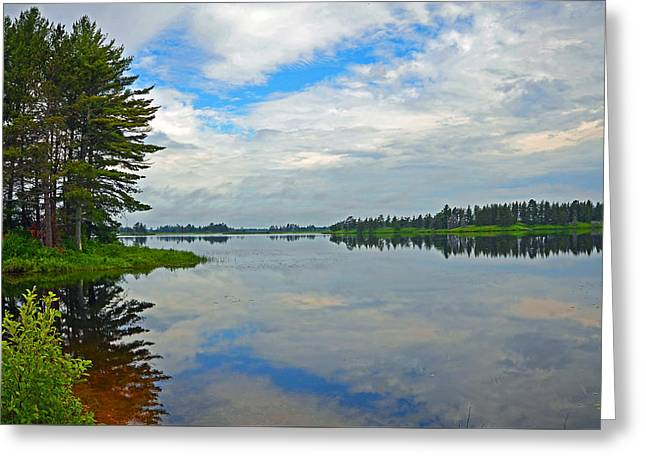 Wildlife Refuge. Greeting Cards - A Patch Of Blue Greeting Card by Rodney Campbell