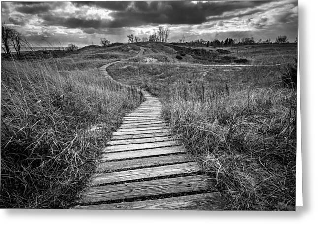 A Path Unwound Greeting Card by Josh Eral